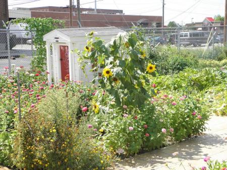 aacfh-garden